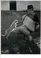 CARTE POSTALE / POSTCARD / PUBLISHED BY FITTING IMAGE HOLLAND / CAT / CHAT