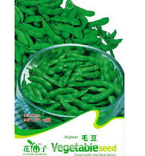 FD1290 Edamame Seed Soybean Seed Soy Bean Green Vegetable ~1 Pack 20 Seeds~