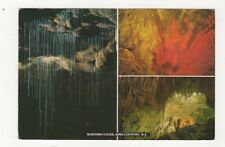 Waitomo Caves King Country 1995 Postcard New Zealand 595a