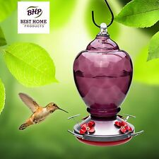 Hummingbird Feeder - HAND-BLOWN GLASS Feeders for Bird Lovers Purple Nectar