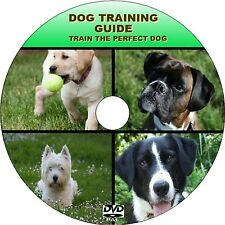 DOG TRAINING DVD LESSONS EASY TO FOLLOW VIDEO INSTRUCTION PUPPY TO ADULT NEW DVD