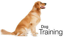 LEARN HOW TO TRAIN YOUR PUPPY / DOG BY THE PROFESSIONALS ON DVD DISPATCHED TODAY