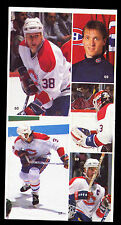 Two 1987/88 PATRICK ROY Vachon Cakes Montreal Canadiens Stickers
