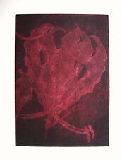 GLORIOSA BURGANDY - LIMITED EDITION SIGNED AQUATINT ETCHING by Studio Angela