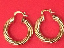 Small size 30mm Gold Filled Chunky Twisted  Hoop Earrings