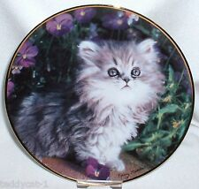Franklin Mint Katzen Sammelteller ~ PURRFECTION! ~ Nancy Matthews