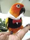 Clothes Parrot Bird Cockatiel cockatoo Parakeet Macaw Conure Birdlover