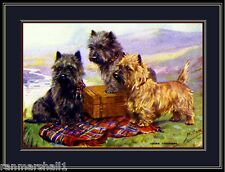 English Picture Print Cairn Terrier Trio Puppy Dog Puppies Dogs Poster Art