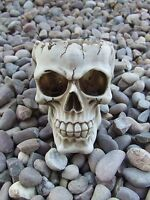 Latex Rubber Mould Mold Molds Of A Skull Lobo Undead Head New