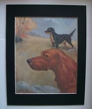 Irish Gordon Setters Dog Print Wesley Dennis Marg Henry Bookplate 1955 Matted