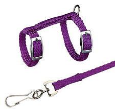 Trixie Harness With Lead For Ferrets/Rats Nylon, 12-25cm/8mm, 1.25m TX6262