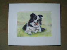 Original Watercolour. Portrait of Lying Border Collie Sheep Dog by Joanna Culley