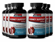 Kidney Cleanse - Kidney Support 700mg - Kidneys & Gallbladder Health Capsules 6B