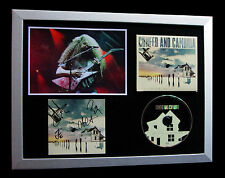 COHEED & CAMBRIA+SIGNED+FRAMED+COLOUR BEFORE SUN=100% AUTHENTIC+FAST GLOBAL SHIP