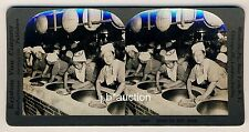 Japan WOMEN DRYING TEA / TEE DÖRREN * Vintage 1900s KEYSTONE Stereo Photo