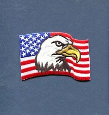 UNITED STATES US FLAG American Eagle Hat Jacket Squadron Patriot Patch