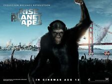 "Rise of the Planet of the Apes 16"" x 12"" Reproduction Movie Poster Photograph"