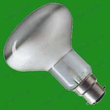 1x 100W R80 Reflector Spot Light Bulbs BC, B22, Bayonet, Heat Lamp Reptiles etc