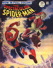 "Marvel Spectacular Spiderman #2 Comics  Wall Poster 8.5""x11"""