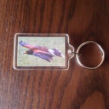 KEYRING BIRD PREY FALCONRY RAPTOR EAGLE HARRIS HAWK KITE KEYS GIFT KEY