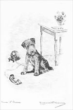Airedale Puppy Terrier Dog  Marguerite Kirmse 1929  8 New Large Note Cards