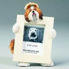 SHIH TZU ~ BROWN & WHITE ~ PICTURE FRAME #38