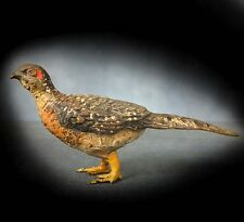 RARE & UNUSUAL COLD PAINTED VIENNA BRONZE - PHEASANT ( HEN )
