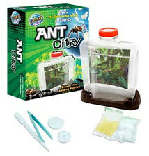 *NEW* WILD SCIENCE Ant City - Bug Catcher Small Scientists Nature
