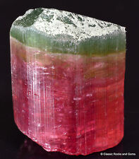 Tourmaline Polychrome Elbaite terminated crystal MG Brazil 1990's 15.5 mm 4.8 g