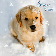 Golden Retriever Puppy Charity Christmas Cards Pack of 10 Cute Dog Xmas Cards