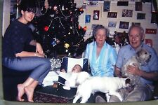 Christmas Family Portrait Pretty Girl Bare Feet Dog Baby Mounted Color Slide