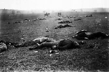New 5x7 Civil War Photo: Incidents of War, Casualty on Gettysburg Battlefield
