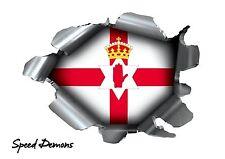 Speed Demons orgullo ráfaga Pegatina Auto Adhesivo Coche PC Rip Torn Irlanda del Norte