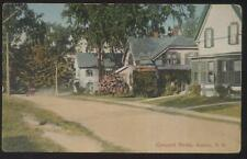 Postcard ANTRIM New Hampshire/NH  Concord Street Family Houses/Homes view 1907