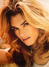 BROOKE SHIELDS headshot 3 poses actress color clippings sexy 3 sheets