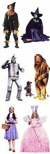 ~ Wizard of Oz Dorothy Lion Tinman Linda Witch Paper House StickyPix Stickers ~