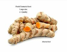 FRESH TURMERIC ROOT   1 LB  # 1  Special  Offer $ 9.99 Good price
