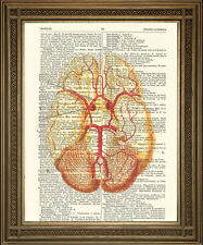 "VINTAGE DICTIONARY PAGE PRINT: Anatomical Brain Illustration, Yellow (10x8"")"