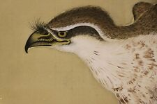 "JAPANESE HANGING SCROLL ART Painting ""Eagle"" Asian antique  #E3314"