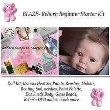 REBORN Starter Beginner Kit, Genesis paints, Mohair, DVD, DOLL KIT- BLAZE
