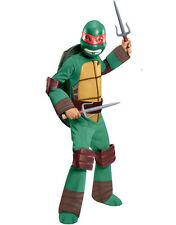 Teenage Mutant Ninja Turtles Raphael Halloween Costume Large 12-14 TMNT