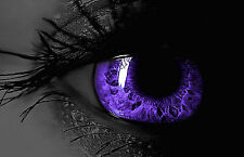 A3 Poster - Black & White Human Eye with Purple Pupil (Picture Poster Body Art)