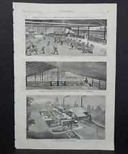 HARPER'S WEEKLY Single Page S3#003 July 1873 Shearing Shed, 1500 Sheep
