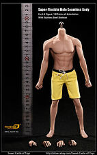 1/6 Phicen Super Flexible Asia Male Seamless Body w/Stainless Steel Skeleton M32