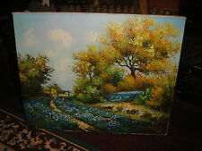 Superb Oil Painting On Canvas-Signed Don Obankis?-Country Flowers-Open Gate