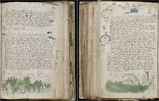 The Voynich Manuscript Ancient Document Secret Language Text Or Hoax? PDF DVD
