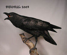 "22"" Life Size Common Raven Original Carving/Birdhug"
