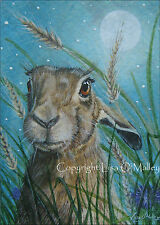 "ACEO, Print, Hare ""Harvest Moon"""