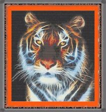 Tiger~Delica Bead Peyote Pattern Only