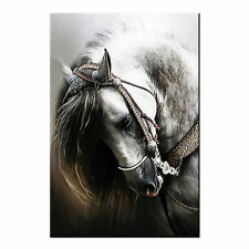 Canvas Art Prints For Living Room Wall Art Canvas Horse Painting Prints-No Frame